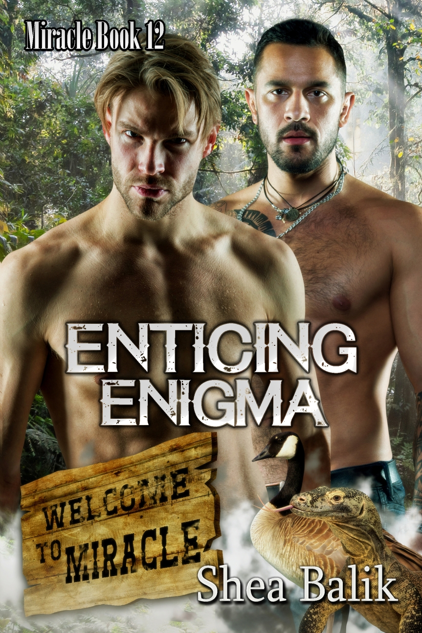 SB Enticing Enigma Full